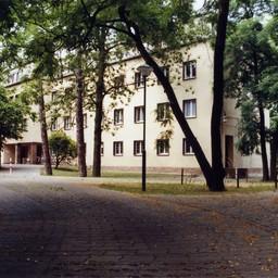 Sorben Sorbisches Wohnheim Jubiläum Maibaumwerfen